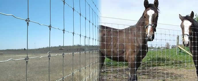 High Tensile Field Fence Cattle Fence Cow Fence Horse